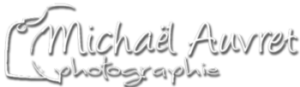 logo entreprise web Michael auvret