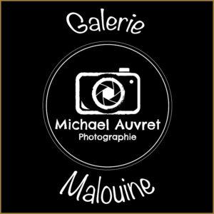 logo galerie malouine saint Malo